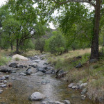 Stream at La Paloma2, Rancho El Aribabi - J. Rorabaugh