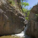 Stream in La Paloma, Rancho El Aribabi - J. Rorabaugh