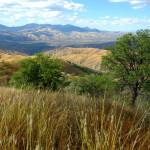 Rancho Aribabi - J. Rorabaugh