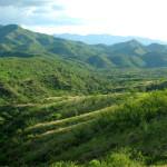 Sierra Azul, western slopes, Rancho Aribabi - J. Rorabaugh