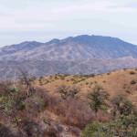 Sierra Los Pinitos from Sierra Azul, Rancho El Aribabi - J. Rorabaugh