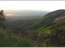 Figura 74. Desde la base de la Sierra Azul hacia el valle de Cocóspera, se aprecian los lomeríos con pastizal natural del Rancho El Aribabi.
